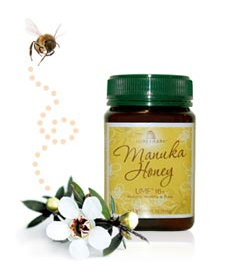 honeymark-case-study