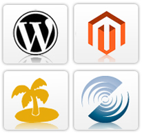 application customization services