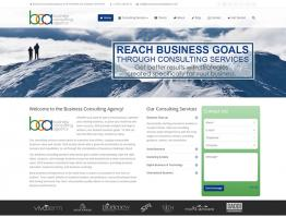 Business Consulting Agency (BCA) Website